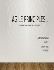 Agile Principles in Software development life cycle.pptx