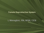 25)Female Reproductive System