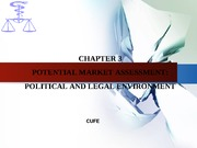 Chapter3    Political and legal environment