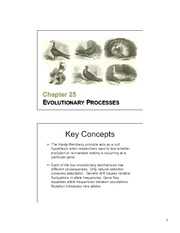 25 Evolutionary Processes slides