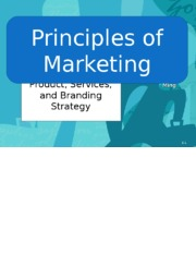 Products, Services, and Branding Strategy 1.25