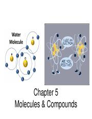 Ch5 Molecules and Compounds S 15