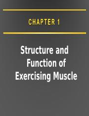 Lecture 9 10 11 Muscle CCU updated (7).ppt