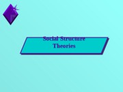 CHP07_Social StructureTheory