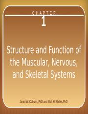 chapter_1_structure and function of the muscular, nervous, and skeletal systems.pptx