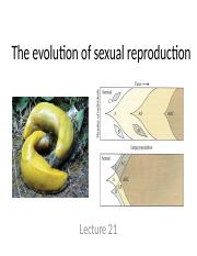 Lecture 21. Evolution of Sexual Reproduction (1)