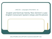 Lecture6 EnglishGerman Tree, English Consonant System