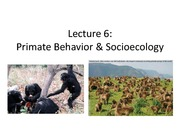 Lecture 6 Priate behavior and sociology