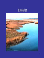 estuaries-1 (1).ppt