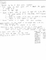 Insulin Notes.pdf