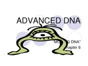 8 Ch ADVANCED DNA-1
