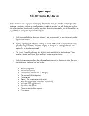 agency_report_outline_for_mkt_337 (2).docx