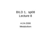 Lecture%208%20080424%20metabolism