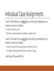Individual Case Assignments.pptx