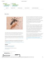 Zika Virus Infection.pdf
