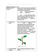stems_leaves_form_(H).docx