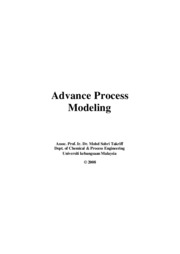 Adv_Process_Modelin_2008