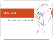 3. Shoulder & Extrinsic Back(2).pptx