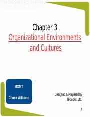 Chapter 3- Organizational Environments & Cultures.ppt