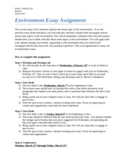 Environment Essay Assignment