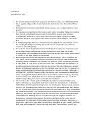media responsibility essay technology
