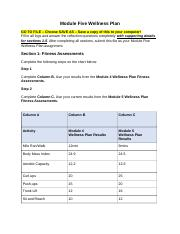 Hope module 5 wellness plan.doc - Module Five Wellness ...