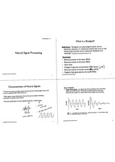 neural signal processing notes
