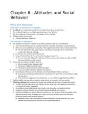 Chapter 6 - Social Psychology Alive.docx