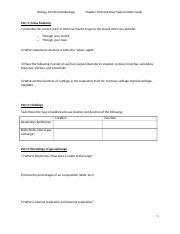 Chapter 10 Respiratory Study Guide