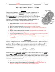 photosynthesis-worksheet-key.pdf - Name_KEY Date Period ...