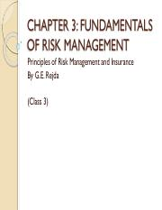 C3b - FUNDAMENTALS OF RISK MGT..pdf