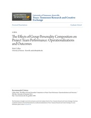 The Effects of Group Personality Composition on Project Team Perf