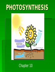 __photosynthesis_notes