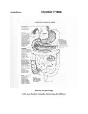 Digestive System a&p