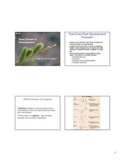 Plant Growth and Development [6]