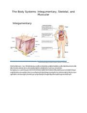 The Body Systems.docx