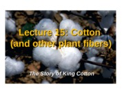 Lecture 15. COTTON.ppt