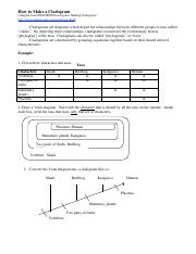 cladogram.pdf - How to Make a Cladogram(Adapted from ENSI ...