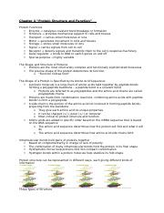 Exam 2 Notes - Chapters 4-10.docx