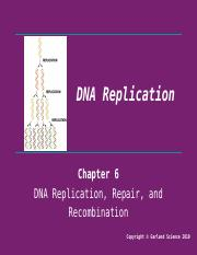 Lecture 8 - DNA Replication.pptx
