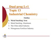 13 Industrial chemistry