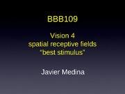 20-Oct23-Vision Receptive field and best stimulus