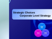 8. Corporate Level Strategy.ppt