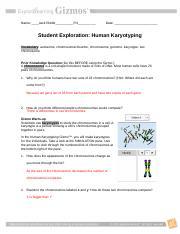 KaryotypingGIZMO - Name_Jack Riddle_P.4 Date Student ...