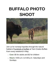 Apply 1-1 Buffalo Photo Shoot Flyer Formatted