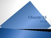 win13Chapter 16
