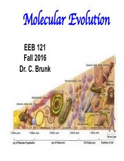 04 Ribosomes - In vitro Evolution Fall 16