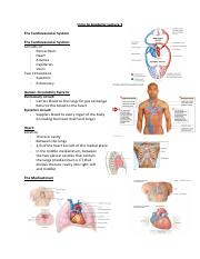 Intro to Anatomy Lecture 3 (1).pdf
