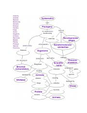 flow chart ch. 18.docx