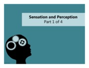 09.11.12 - Sensation and Perception - Part 1 of 4 - full page slides